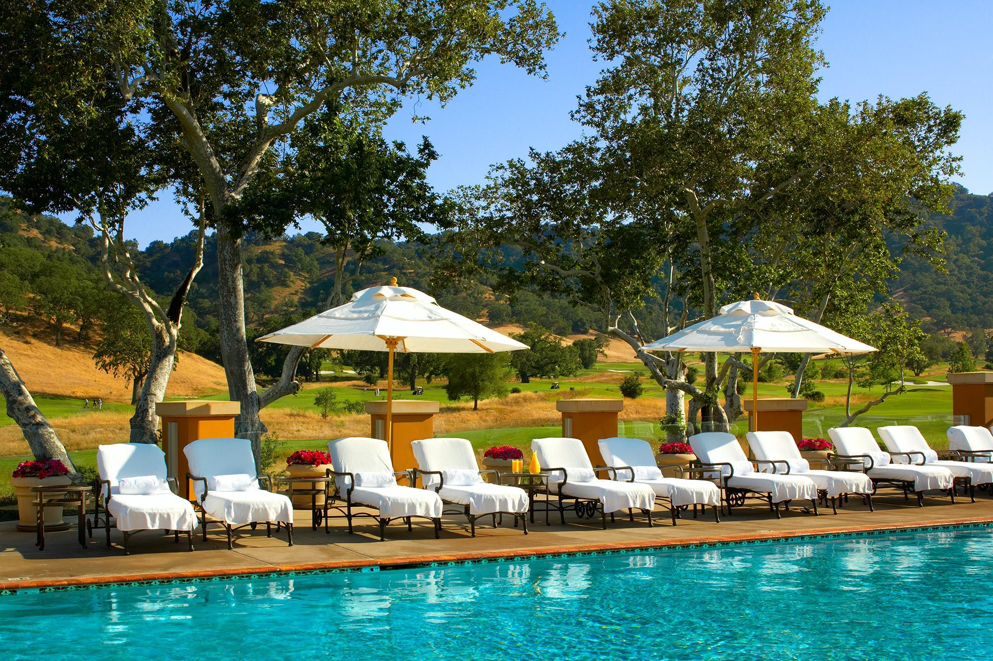 cordevalle_pool_lab-copy